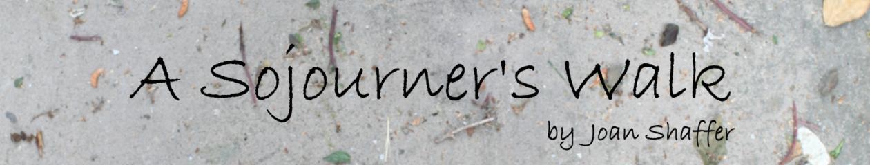 A Sojourner's Walk
